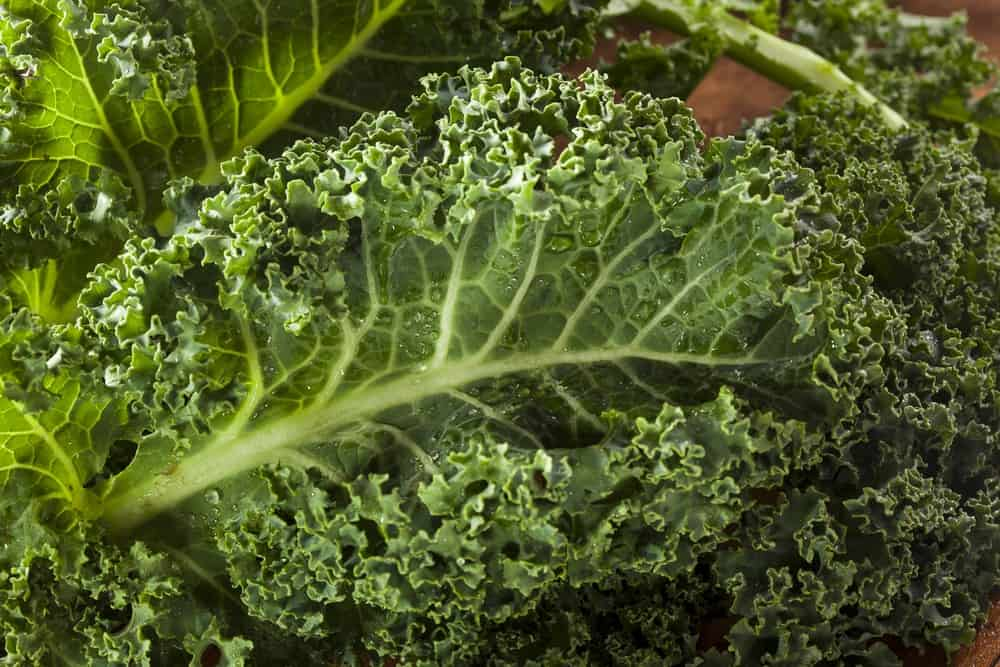 how to juice kale