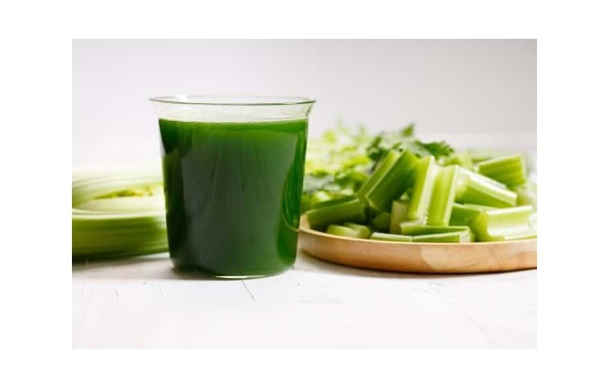 mm900hds low speed masticating celery juicer