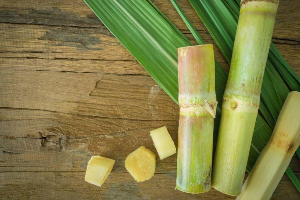 sugarcane juice calories